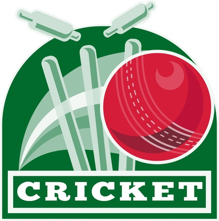 wicket: illustration of a cricket ball hitting bowling over wicket with words  cricket