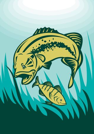 largemouth: illustration of a largemouth bass preying on perch fish viewed underwater