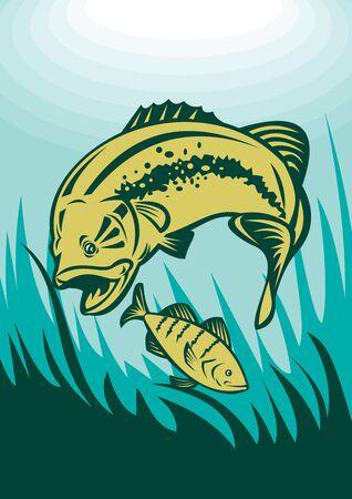 largemouth bass: Ilustraci�n de un bajo Micropterus aprovecharse de peces perca ver bajo el agua