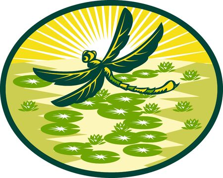 lily pad: illustration of a dragonfly flying with lily pads and sunburst in background set inside an oval done in retro woodcut style.