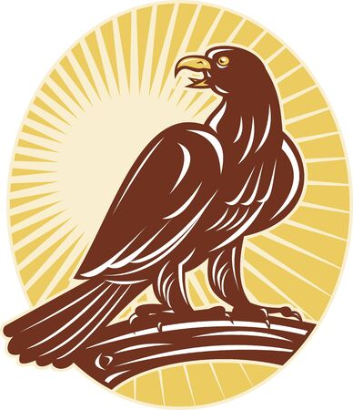 perching: illustration of an Eagle perching on branch looking to side with sunburst in background set inside ellipse done in retro style.