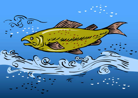 speckled trout: sketch style vector illustration of a speckled trout swiming underwater Stock Photo