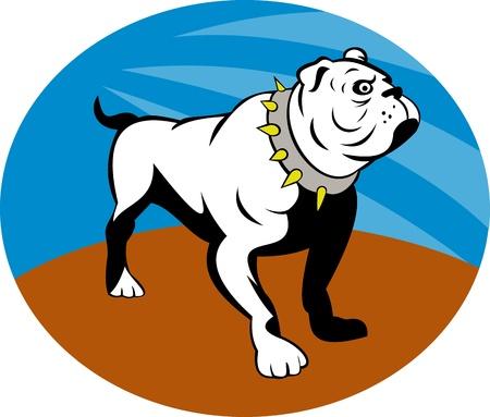 illustration of a Proud English bulldog set inside an oval. illustration