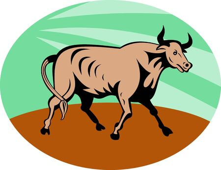 texas longhorn cattle: illustration of a Raging texas longhorn bull charging  Stock Photo