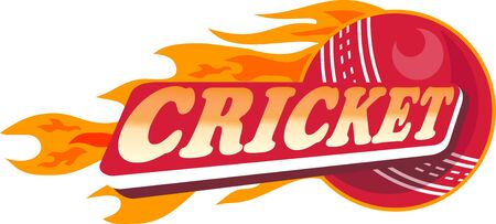 cricket: illustration of a cricket sports ball with fire and flames on isolated white  background done in retro style