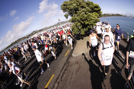 entrants: AUCKLAND- MARCH 14: Participants of Auckland Round the Bays,one of the worlds largest fun-runs with an estimated 70,000 entrants, in Auckland, New Zealand on March 14, 2010. Editorial