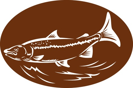 speckled trout: illustration of a trout fish set inside oval done in retro woodcut style Stock Photo
