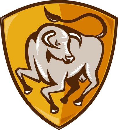 508 Charging Bull Stock Vector Illustration And Royalty Free ...