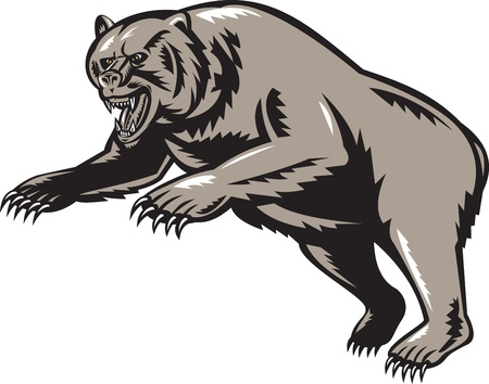 attacking:  illustration of a grizzly bear attacking done woodcut style on isolated background Stock Photo