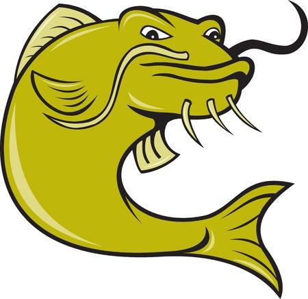 catfish: illustration of angry catfish done in cartoon style on isolated white background. Stock Photo