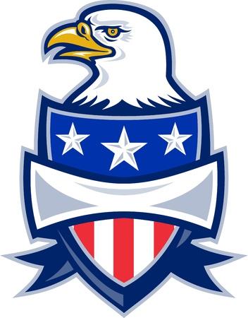 bald eagle: Ilustraci�n de un �guila calva frente al lado de estrellas de Am�rica y el escudo bandera de rayas sobre fondo blanco. Vectores