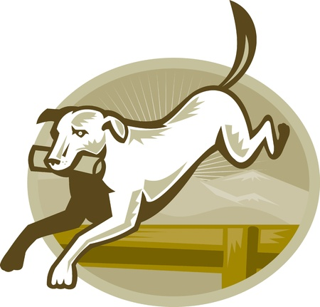 hunting dog: Illustration of a retriever dog training jumping hurdle obstacle done in retro style
