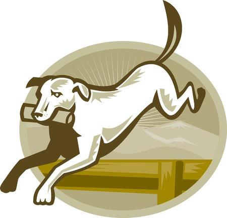 jumping fence: Ilustración de un perro perdiguero de la formación obstáculo obstáculo de salto realizado en estilo retro Vectores
