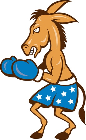 Cartoon illustration of a donkey jackass boxer with boxing gloves and stars shorts as democrat mascot  Illustration