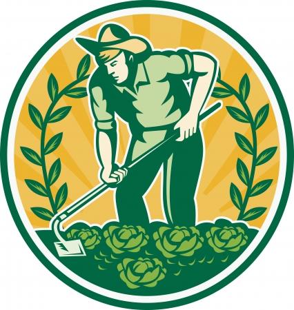 원예: 정원 괭이 작업 양배추 패치 원 안에 설정 복고 스타일을 이루어 포도 나무와 농부 정원사의 그림, 일러스트