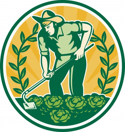Illustration of a farmer gardener with garden hoe working cabbage patch and vine done in retro style set inside circle, Stock Vector - 13620586