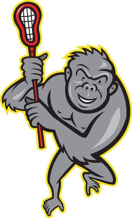 primate: Illustration of a gorilla ape holding a lacrosse stick viewed from the front on isolated white background  Illustration