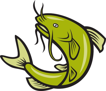 catfish: Illustration of a catfish jumping done in cartoon style