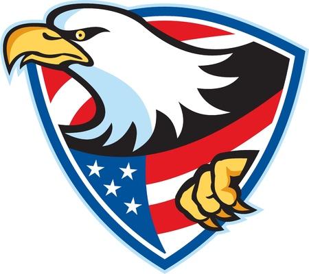bald eagle: Ilustraci�n de un �guila calva americana American estrellas rayas de la bandera situada en el interior escudo sobre fondo blanco.
