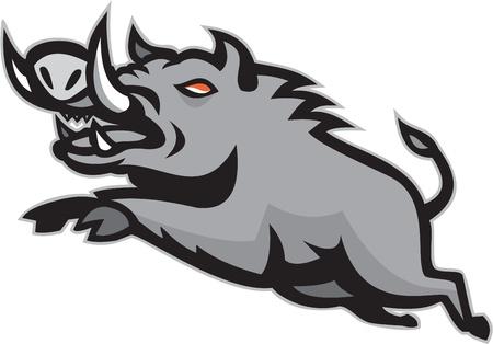 sanglier: Illustration d'un cochon sanglier Razorback saut sauvage sur fond isolé fait dans le style rétro.