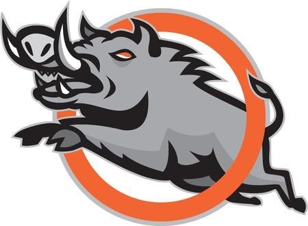 jabali: Ilustración de un cerdo jabalí jorobado saltando a través de un anillo o círculo en el fondo aislado hecho en estilo retro.