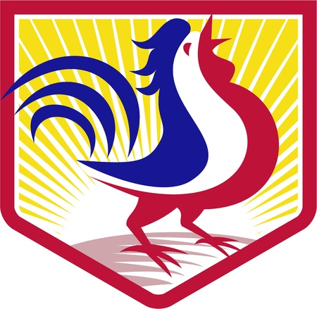 Illustration of a rooster cockerel crowing facing side set inside crest shield with sunburst done in retro style Vector