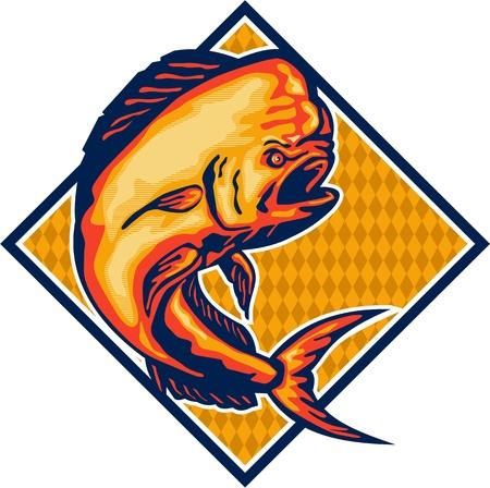 dorado: Illustration of a dorado dolphin fish mahi-mahi jumping set inside diamond shape on isolated background.