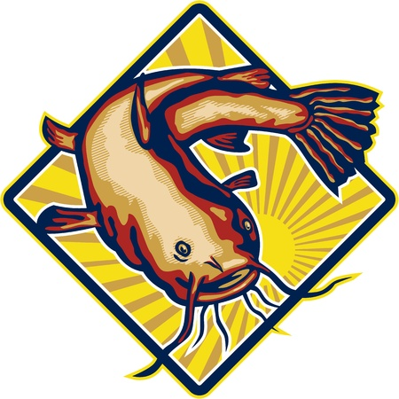 known: Illustration of a ray-finned fish catfish also known as mud cat, polliwogs or chucklehead jumping set inside diamond shape with sunburst done in retro style.