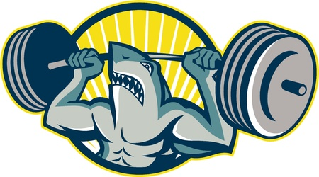 lifting weights: Illustration of a shark weightlifter lifting weights barbell viewed from front set inside circle  Illustration