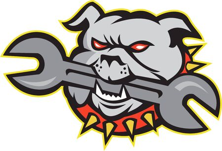 bulldog: Illustration of an bulldog dog mongrel head mascot biting a spanner wrench tool facing front on white background done in retro style  Illustration