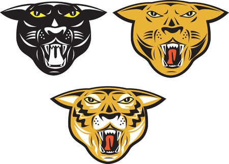 black panther: Illustration of panther big cat tiger head facing front growling set on isolated white background done in retro style. Illustration