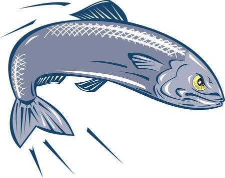 Illustrazione di un arrabbiato sardine pesce che salta su sfondo bianco isolato fatto in stile cartone animato.
