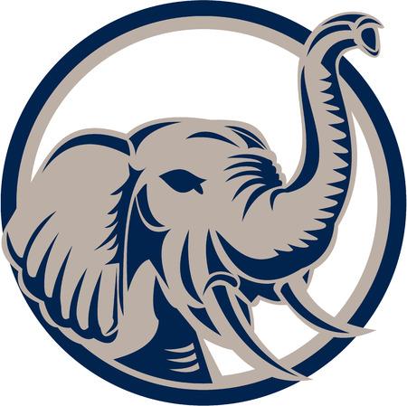 cabeza: Ilustración de una cabeza de elefante, vistos de frente fijó el círculo interior en el fondo blanco aislado hecho en estilo retro.