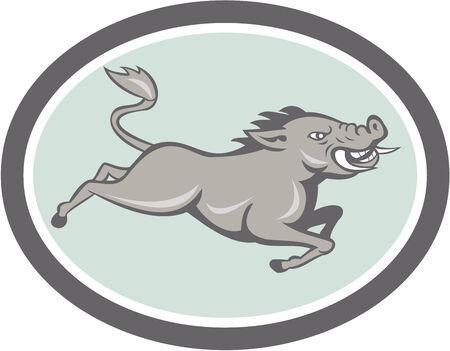 jabali: Ilustraci�n de un salvaje razorback jabal� cerdo saltando en el fondo aislado hecho en estilo de dibujos animados dentro de �valo.