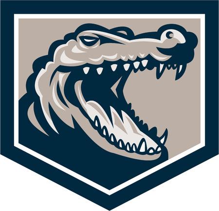 hocico: Ilustraci�n de un cocodrilo enojado cabeza chasquido hocico dentro de escudo hecho en estilo retro en el fondo aislado.