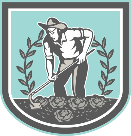hoe: Illustration of male organic farmer gardener horticulturist  with grab hose tilling land with cabbage vegetalbe plant sprouting growing set inside shield done in retro style.