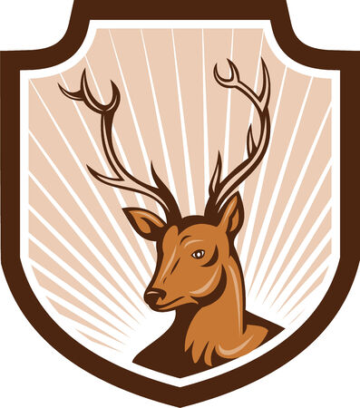 buck: Illustration of a stag deer buck head facing front set inside shield crest done in cartoon style.