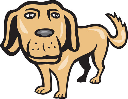 spaniel: Illustration of a golden retriever dog with big head looking towards viewer done in cartoon style on isolated background. Illustration