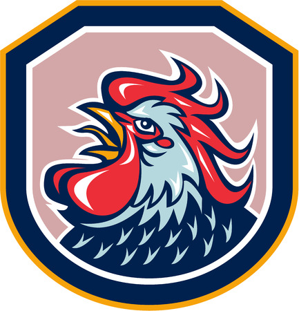 crowing: Illustration of a rooster cockerel head crowing facing side set inside shield crest shape done in retro style on isolated background.