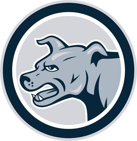barking: Illustrazione di un arrabbiato abbaiare mastino cane bastardo visto dal set lato interno cerchio su sfondo bianco fatto in stile cartone animato. Vettoriali