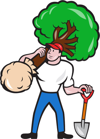 Illustration of gardener arborist tree surgeon carrying a tree and holding shovel viewed from front on isolated white background done in cartoon style. Illustration