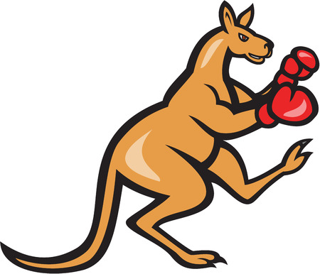 kangaroo: Illustration of a kangaroo kick boxer boxing with boxing gloves viewed from side on isolated background done in cartoon style.