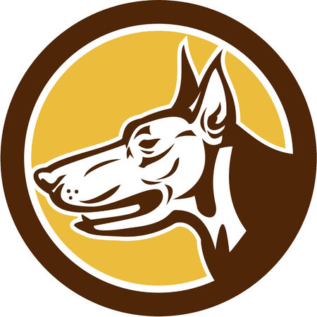 Illustration of a Doberman Pinscher guard dog head viewed from side set inside circle shape on isolated background done in retro style. Vector