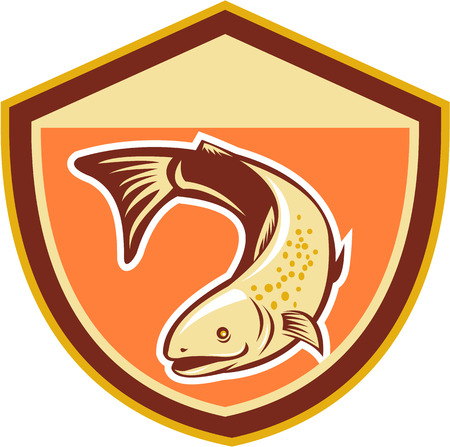 speckled trout: Illustration of a trout fish swimming down set inside shield done in retro style
