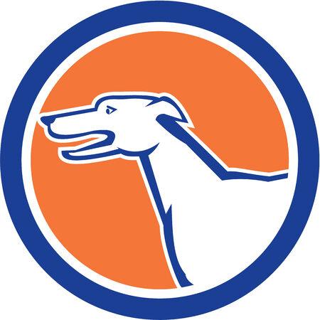chart: Ilustracja charta głowy pies patrząc z boku ustawić wewnątrz koła wykonane w stylu retro.