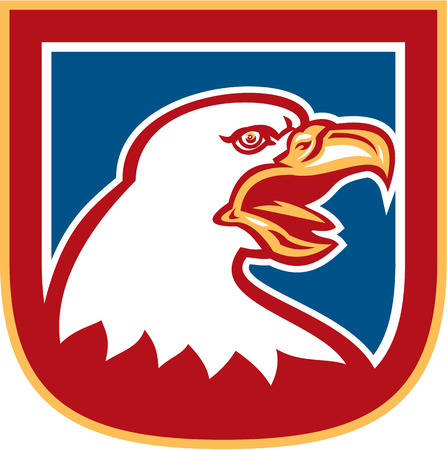 Illustration of an american bald eagle head set inside shield crest on isolated background done in retro style. Vector