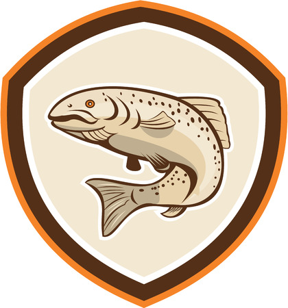 speckled trout: Illustration of a rainbow trout fish jumping set inside shield crest done in cartoon style on isolated background.