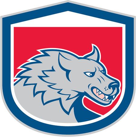 perro furioso: Ilustración de una cabeza de lobo perro salvaje enojado gruñendo Snarling conjunto dentro cresta escudo hecho en estilo de dibujos animados. Vectores