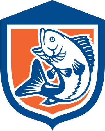 bass fish: Illustration of a largemouth bass fish jumping viewed from the side set inside a shield crest done in retro style.