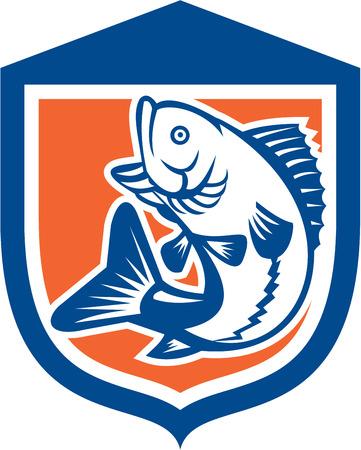 largemouth bass: Ilustraci�n de un pez lobina negra saltando visto desde el lado de conjunto dentro de una cresta escudo hecho en estilo retro. Vectores